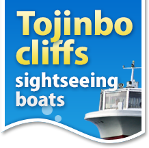 Tojinbo cliffs sightseeing boats